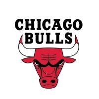 chicago-bulls logo