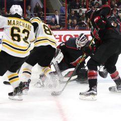 Playoff NHL '19: Bruins e Blues, la finale in-attesa